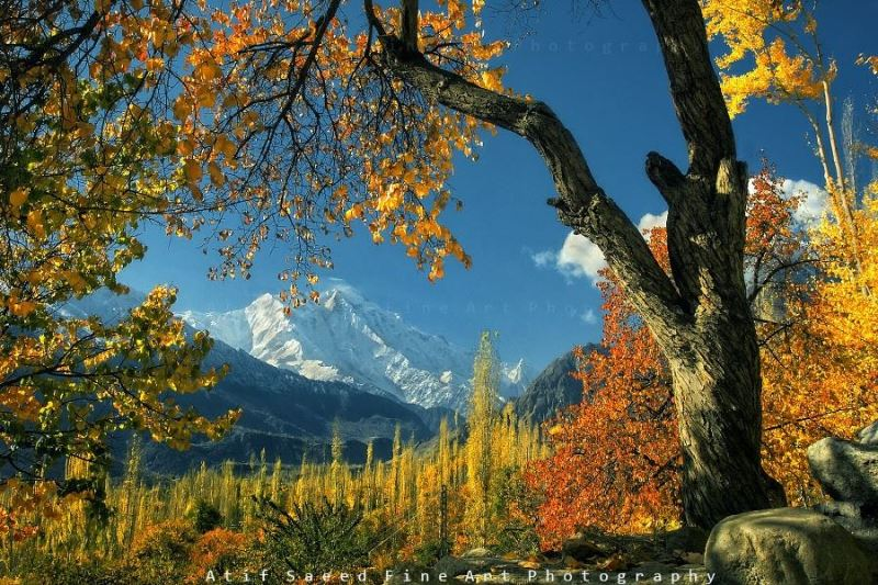 Hunza picture